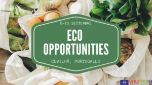 INFOPACK ECO OPPORTUNITIES