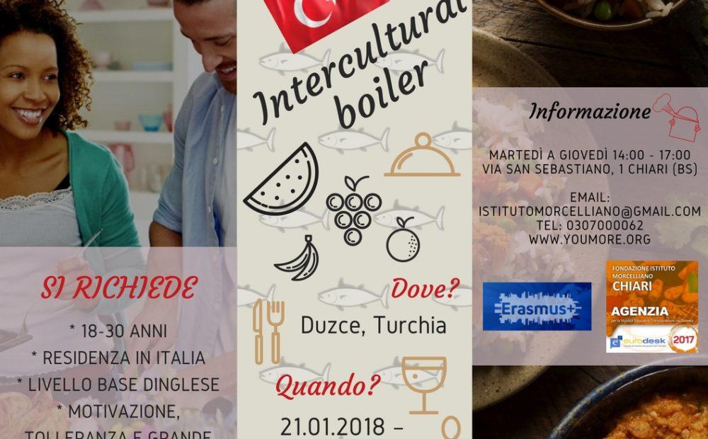Intercultural boiler
